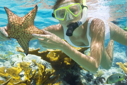 Snorkel-cruise
